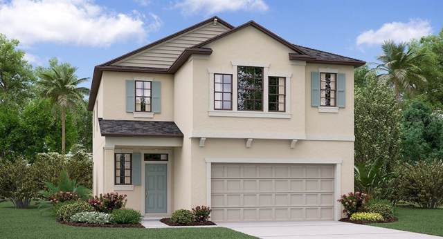 21861 Crest Meadow Drive, Land O Lakes, FL 34637 (MLS #T3218835) :: Armel Real Estate