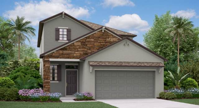 21905 Crest Meadow Drive, Land O Lakes, FL 34637 (MLS #T3218838) :: Armel Real Estate