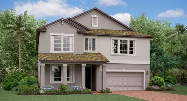 8835 Flourish Drive, Land O Lakes, FL 34637 (MLS #T3218842) :: Armel Real Estate