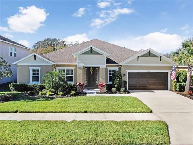 1665 Virginia Willow Drive, Wesley Chapel, FL 33544 (MLS #T3218851) :: Team Pepka