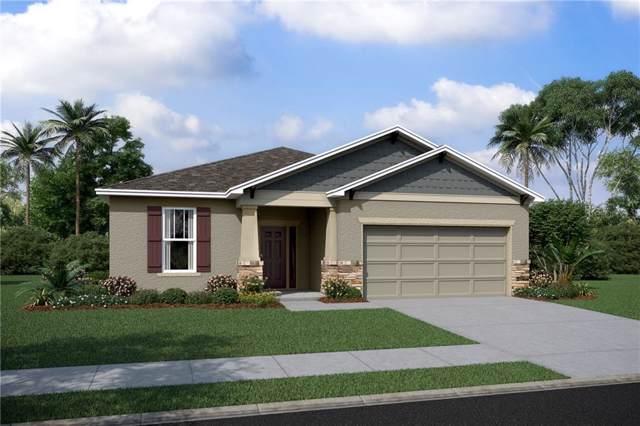 33055 Frogs Leap Lane #3224, Wesley Chapel, FL 33545 (MLS #T3218866) :: GO Realty