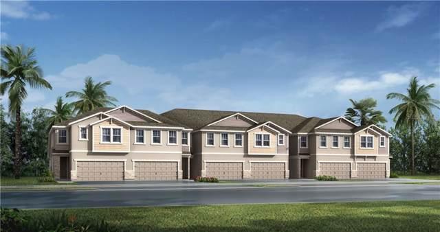 5711 Grand Sonata Avenue #19, Lutz, FL 33558 (MLS #T3219024) :: Team Bohannon Keller Williams, Tampa Properties