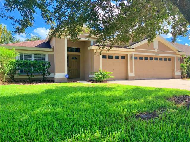 10559 San Travaso Drive, Tampa, FL 33647 (MLS #T3219172) :: Team Bohannon Keller Williams, Tampa Properties