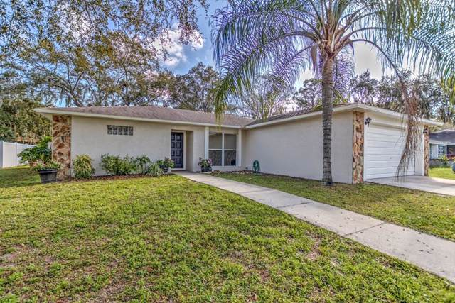 2005 Sycamore Lane, Plant City, FL 33563 (MLS #T3219256) :: Cartwright Realty