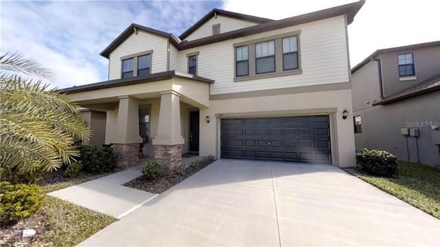 10911 Purple Martin Boulevard, Riverview, FL 33579 (MLS #T3219399) :: Griffin Group