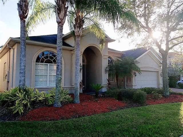 27402 Water Ash Drive, Wesley Chapel, FL 33544 (MLS #T3219504) :: Team Bohannon Keller Williams, Tampa Properties
