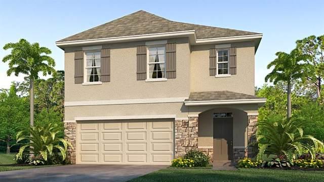 10998 Penny Gale Loop, San Antonio, FL 33576 (MLS #T3219538) :: Sarasota Home Specialists