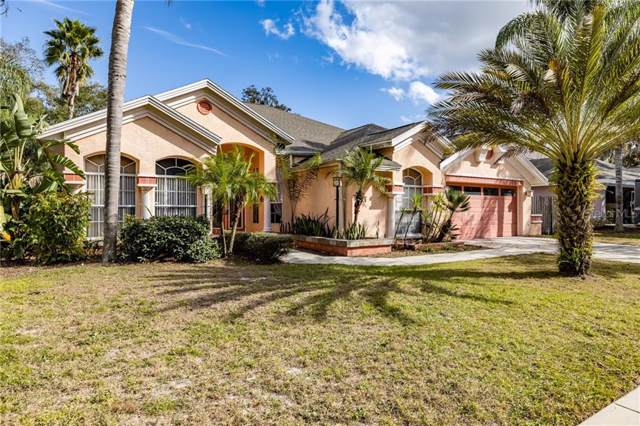 10422 Nightengale Drive, Riverview, FL 33569 (MLS #T3219605) :: Griffin Group