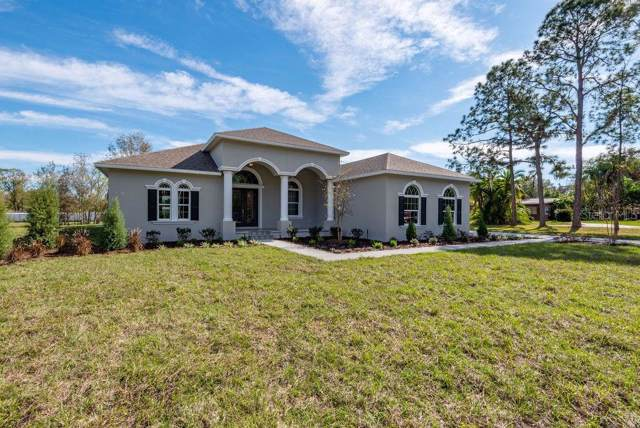 17205 Hanna Road, Lutz, FL 33549 (MLS #T3219616) :: Carmena and Associates Realty Group