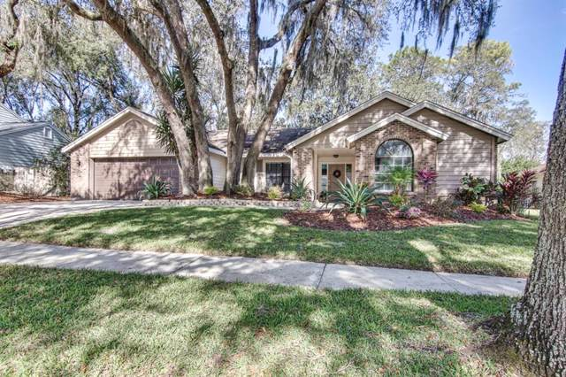 2807 Ormandy Court, Tampa, FL 33618 (MLS #T3219627) :: Keller Williams Realty Peace River Partners