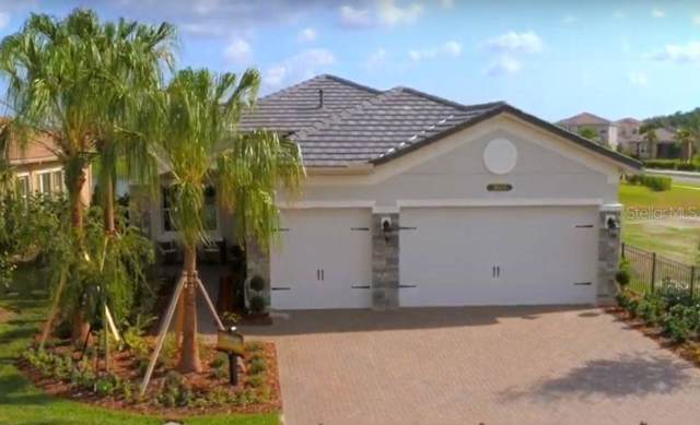 30414 Sunland Court, Wesley Chapel, FL 33543 (MLS #T3219629) :: Team TLC   Mihara & Associates