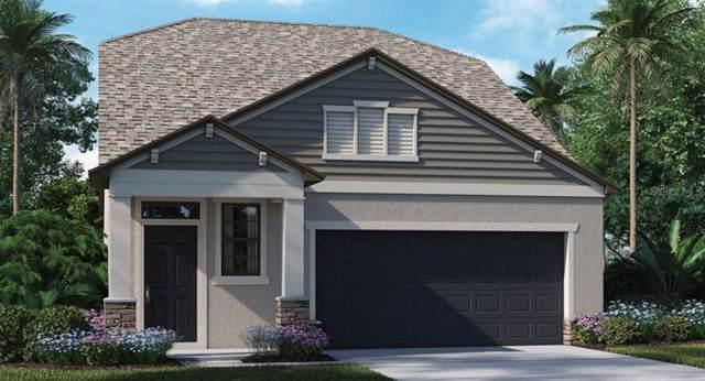 8948 Flourish Drive, Land O Lakes, FL 34637 (MLS #T3219695) :: Armel Real Estate
