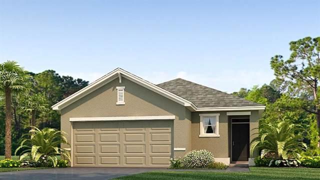 10836 Trailing Vine Drive, Tampa, FL 33610 (MLS #T3219741) :: 54 Realty