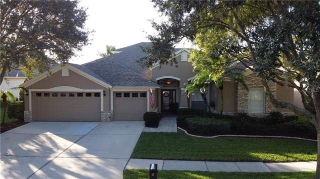 16927 Falconridge Road, Lithia, FL 33547 (MLS #T3219745) :: Team Bohannon Keller Williams, Tampa Properties