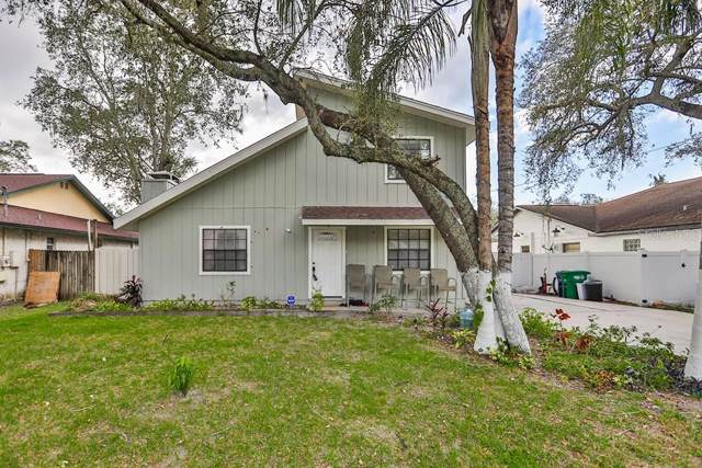 10214 N Hyaleah Road, Tampa, FL 33617 (MLS #T3219750) :: Griffin Group