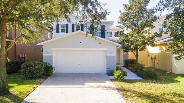 4629 White Bay Circle, Wesley Chapel, FL 33545 (MLS #T3219768) :: Cartwright Realty