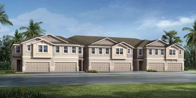 6224 Scarlet Darter Way 93/M, Tampa, FL 33625 (MLS #T3219803) :: Team Bohannon Keller Williams, Tampa Properties