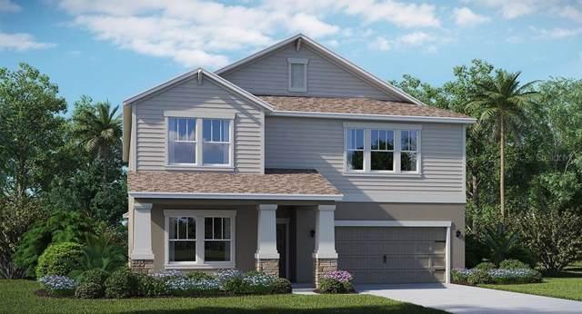 2021 Camden Loop, Davenport, FL 33837 (MLS #T3219829) :: 54 Realty