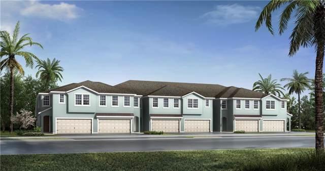 6235 Scarlet Darter Way 59/I, Tampa, FL 33625 (MLS #T3219849) :: Team Bohannon Keller Williams, Tampa Properties