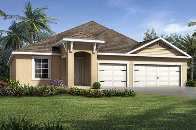 2524 Valley Sunset Lane #23, Valrico, FL 33594 (MLS #T3219891) :: Zarghami Group