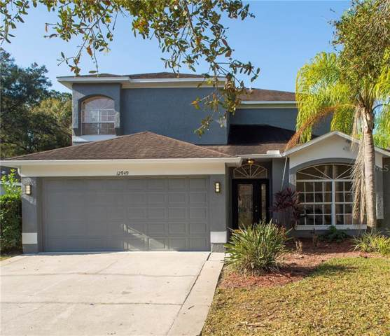 12949 Royal George Avenue, Odessa, FL 33556 (MLS #T3219939) :: Team Bohannon Keller Williams, Tampa Properties