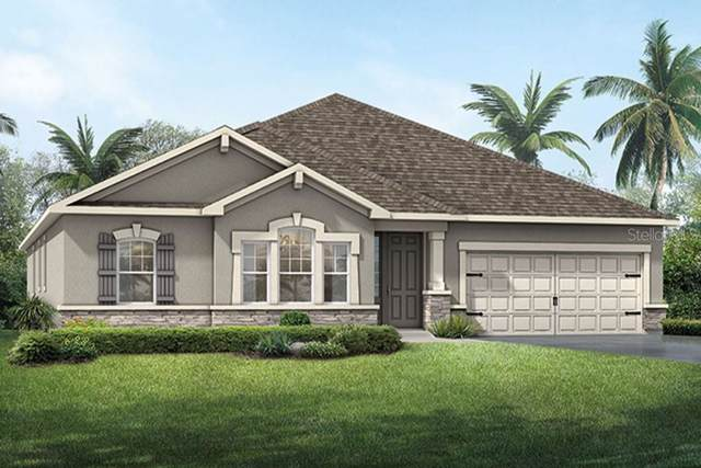 915 Better Days Place #72, Valrico, FL 33594 (MLS #T3219989) :: Zarghami Group