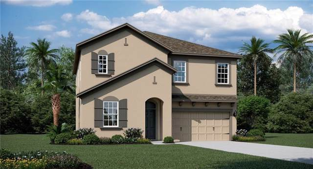 754 Bonsai Street, Apopka, FL 32703 (MLS #T3220032) :: Team Bohannon Keller Williams, Tampa Properties