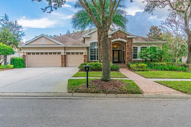 15938 Sorawater Drive, Lithia, FL 33547 (MLS #T3220078) :: Team Bohannon Keller Williams, Tampa Properties