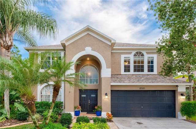 12520 Blazing Star Drive, Tampa, FL 33626 (MLS #T3220082) :: Team Bohannon Keller Williams, Tampa Properties