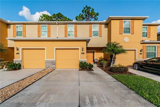 13917 River Willow Place, Tampa, FL 33637 (MLS #T3220092) :: Griffin Group