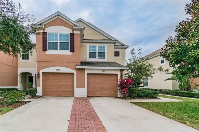 26612 Castleview Way, Wesley Chapel, FL 33544 (MLS #T3220095) :: Lockhart & Walseth Team, Realtors