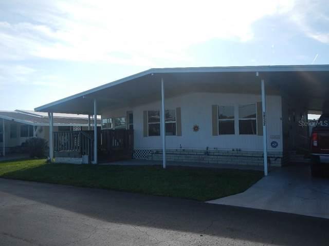 34552 Rosebud Row, Zephyrhills, FL 33541 (MLS #T3220132) :: 54 Realty