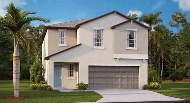 5134 Olano Street, Palmetto, FL 34221 (MLS #T3220147) :: Gate Arty & the Group - Keller Williams Realty Smart