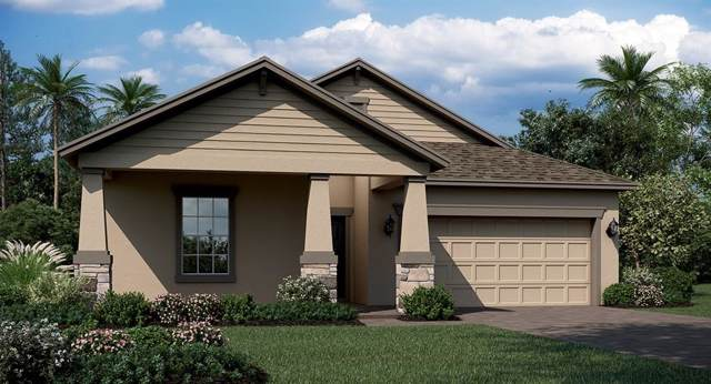 768 Bonsai Street, Apopka, FL 32703 (MLS #T3220150) :: GO Realty