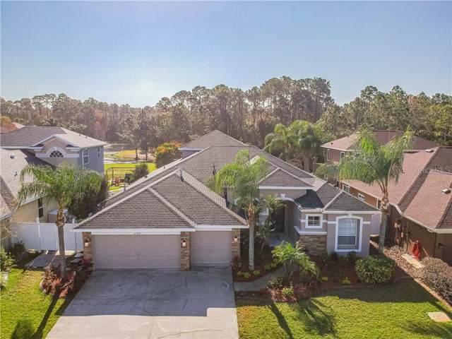 12908 Castlemaine Drive, Tampa, FL 33626 (MLS #T3220214) :: Team Bohannon Keller Williams, Tampa Properties