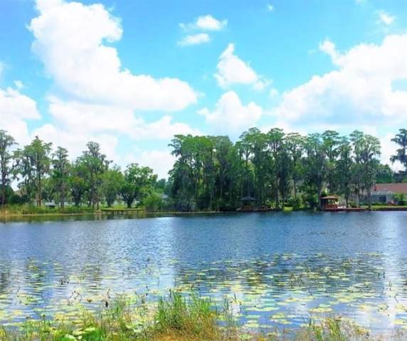 16309 Dew Drop Lane, Tampa, FL 33625 (MLS #T3220222) :: GO Realty