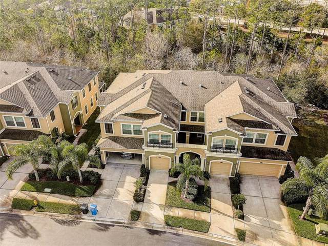 12554 Silverdale Street, Tampa, FL 33626 (MLS #T3220247) :: Team Bohannon Keller Williams, Tampa Properties
