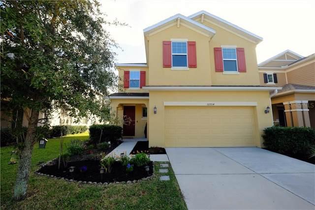 32704 Windelstraw Drive, Wesley Chapel, FL 33545 (MLS #T3220271) :: Team Bohannon Keller Williams, Tampa Properties