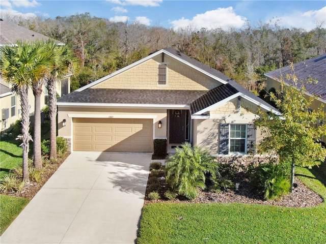 27027 Carolina Aster Drive, Wesley Chapel, FL 33544 (MLS #T3220285) :: Team Pepka