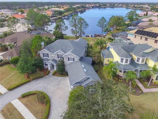 10501 Cory Lake Drive, Tampa, FL 33647 (MLS #T3220297) :: Team Bohannon Keller Williams, Tampa Properties