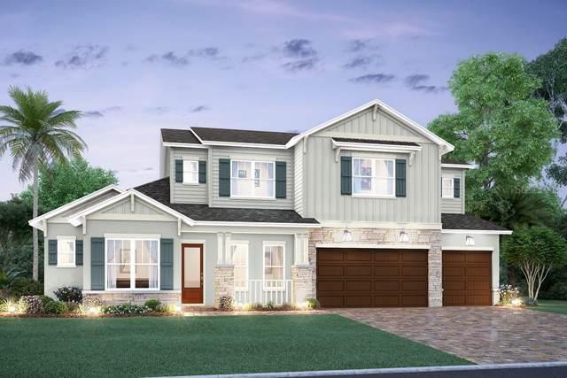 4016 W Watrous Avenue, Tampa, FL 33629 (MLS #T3220323) :: Zarghami Group