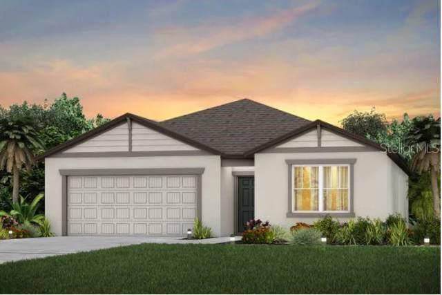 1003 Coastal Hammock Ave., Ruskin, FL 33570 (MLS #T3220376) :: Team Bohannon Keller Williams, Tampa Properties