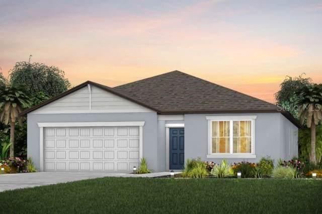 1004 Coastal Hammock Ave., Ruskin, FL 33570 (MLS #T3220398) :: Team Bohannon Keller Williams, Tampa Properties