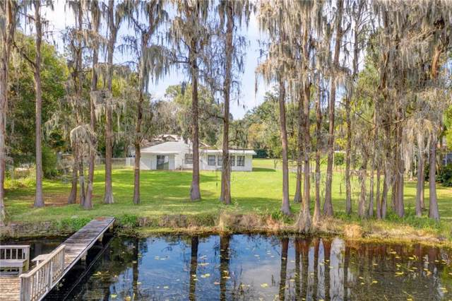 7221 N Mobley Road, Odessa, FL 33556 (MLS #T3220411) :: Team Bohannon Keller Williams, Tampa Properties