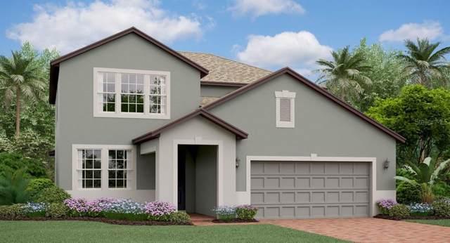 8735 Capstone Ranch Drive, New Port Richey, FL 34655 (MLS #T3220413) :: Premium Properties Real Estate Services