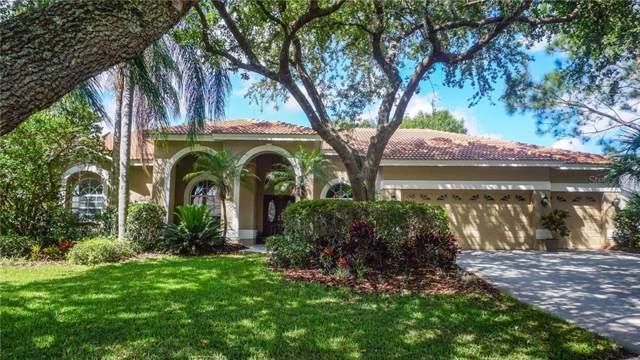17806 Ridgeway Court, Tampa, FL 33647 (MLS #T3220448) :: Team Bohannon Keller Williams, Tampa Properties