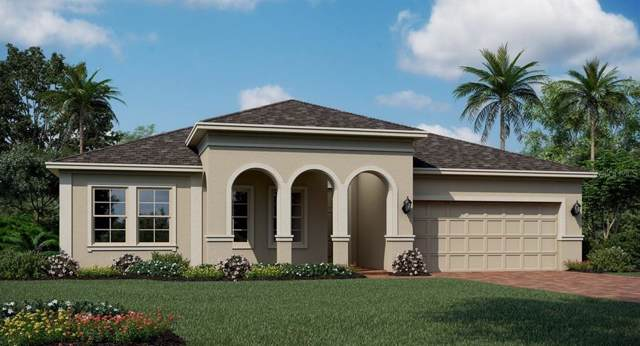1699 Lake Sims Parkway, Ocoee, FL 34761 (MLS #T3220555) :: Griffin Group