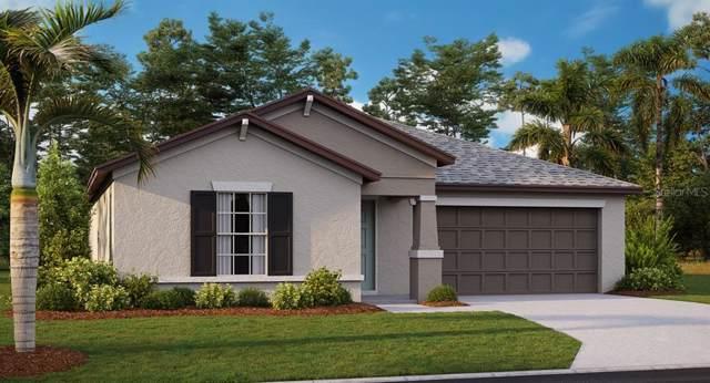 13007 Minty Chapel Court, Riverview, FL 33579 (MLS #T3220569) :: Lovitch Group, LLC