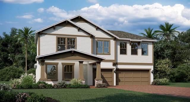 1814 Lake Sims Parkway, Ocoee, FL 34761 (MLS #T3220572) :: Team Bohannon Keller Williams, Tampa Properties