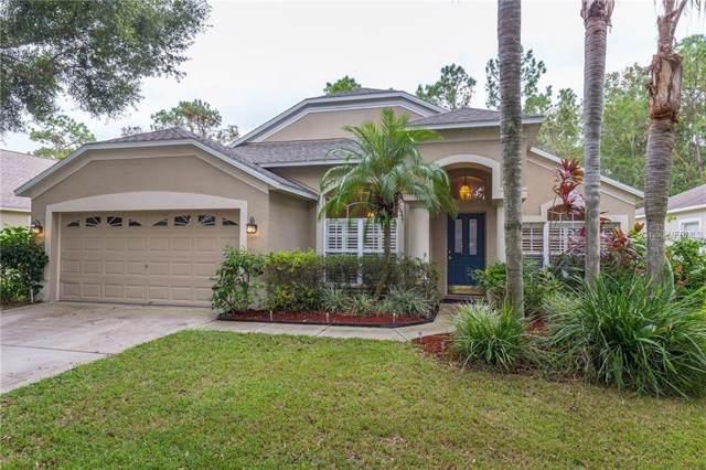 11830 Lancashire Drive, Tampa, FL 33626 (MLS #T3220595) :: Andrew Cherry & Company